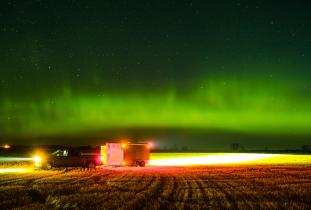 Manitoba Northern Lights