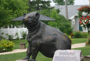 Duke the Giant Black Bear