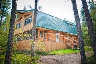 Great Gray Owl Mini lodge