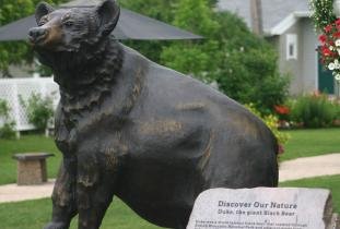 Rossborn Historic Sites - Black Bear