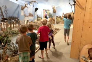 Goodon Wildlife Museum
