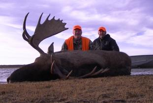 Agassiz Outfitter, moose hunting