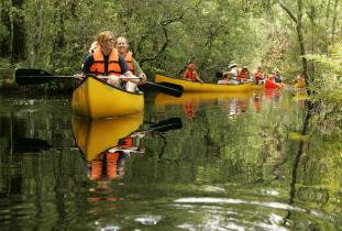 group canoeing