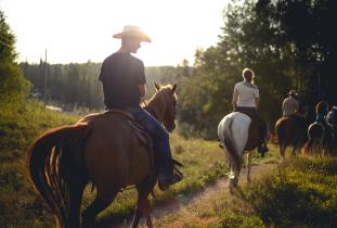Horseback riding through boreal forest trails