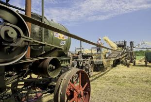 Threshing demonstration at the Manitoba Threshermen's Reunion & Stampede