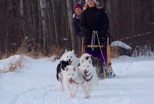 Harness Adventure Mushing Co.
