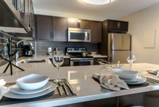 Luxury Furnished Suite