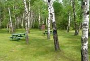 Interlake Forest Center - Wayside Park Campground