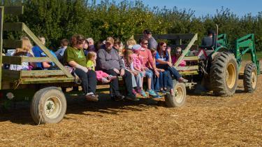 Beasley's Orchard in Danville, IN