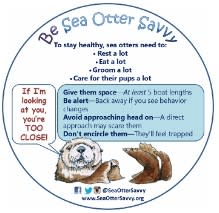 Sea Otter Savvy