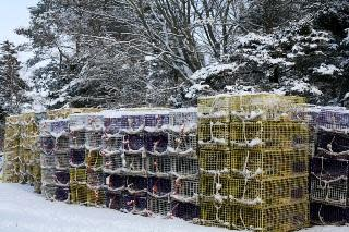 Crab traps in the snow