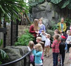 Family fun tour, Franklin Park Conservatory