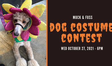 3rd Annual Dog Costume Contest