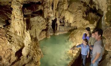 Membership Mixer: Natural Bridge Caverns