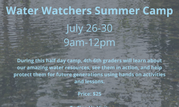 Water Watchers Summer Camp