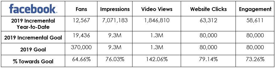 Social Media - Consumer Facebook Metrics