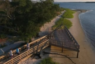Carolina Beach State Park from video