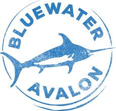 bluewater Avalon log