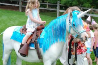 Jozee Rooz Unicorn Rides
