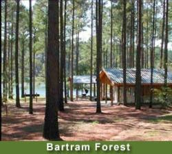 Bartram Forest