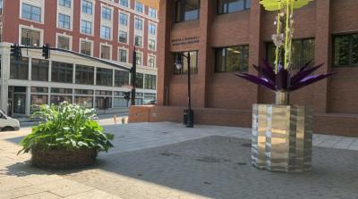 Bee Violet PVDFest 2020 Public Sculpture