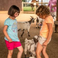 lake-tobias-petting-zoo
