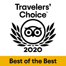 Travelers' Choice 2020 Logo