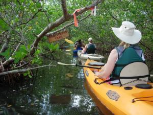 Wolverton Trail Kayaking