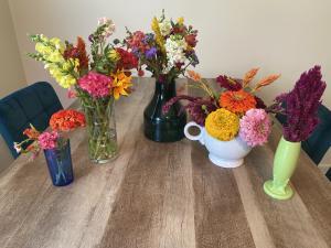 Paulus Farm Market U-Pick Flowers