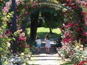 Mills Rose Garden