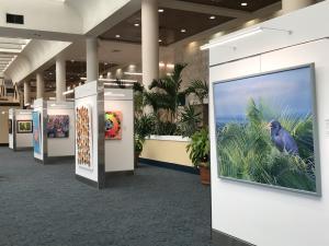 Gallery at PBI