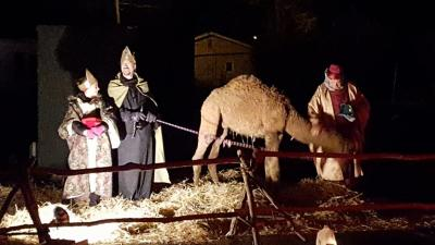 Check out the live people and animals at the Drive-Thru Nativity in Danville on Sunday evening. (Photo courtesy of Danville United Methodist Church Facebook page)