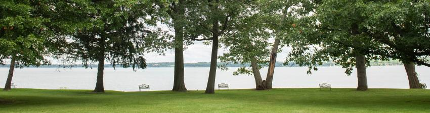 Top 10 Places To Read A Book In The Finger Lakes