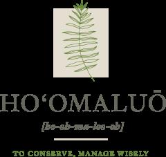 Hoomaluo logo