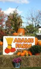 Adams Farm Mega Maze Admission