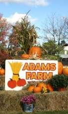 Adams Farm Mega Maze Admission