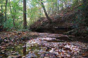Cane Creek Canyon Nature Preserve