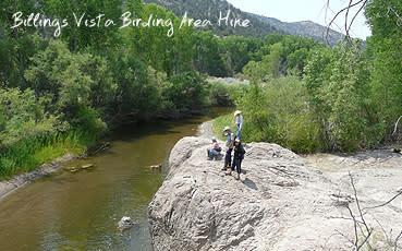 Gila Cliff - Billings Vista
