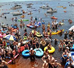 Charlotte Harbor Freedom Swim