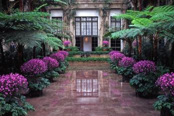 Longwood Gardens - Conservatory 2
