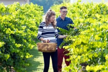 Hinnant-Vineyards-Couple