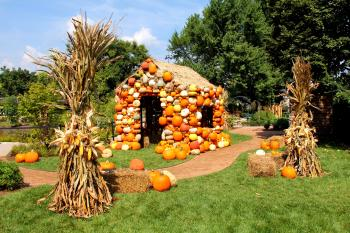 Pumpkin house surrounded by corn stalks at Franklin Park Conservatory's Harvest Blooms exhibit
