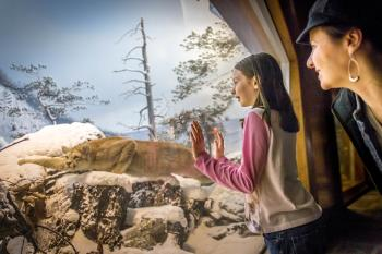 family-travel-tips-state-museum-of-pa-harrisburg