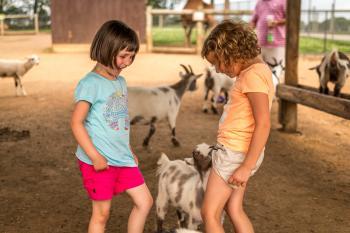 family-travel-tips-lake-tobias-petting-zoo