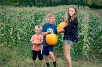 Pumpkin Picking at Beasley's Orchard in Danville, Indiana
