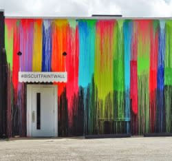 Biscuit Paint Wall mural in Houston