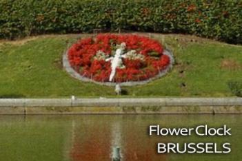 Flower Clock Brussels