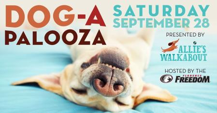 dog a palooza promotional graphic florence ky