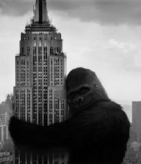 Kong Hearts NY
