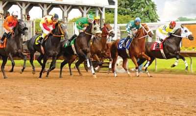 Horses race out of the starting gate at Finger Lakes Gaming and Racetrack in Farmington